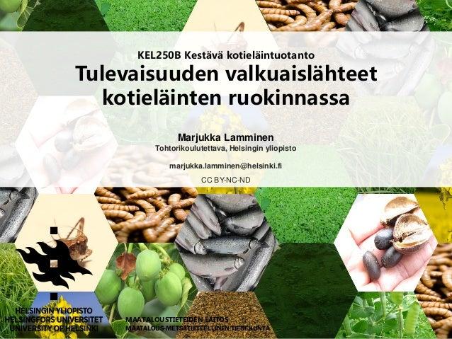 KEL250B Kestävä kotieläintuotanto Tulevaisuuden valkuaislähteet kotieläinten ruokinnassa Marjukka Lamminen Tohtorikoulutet...