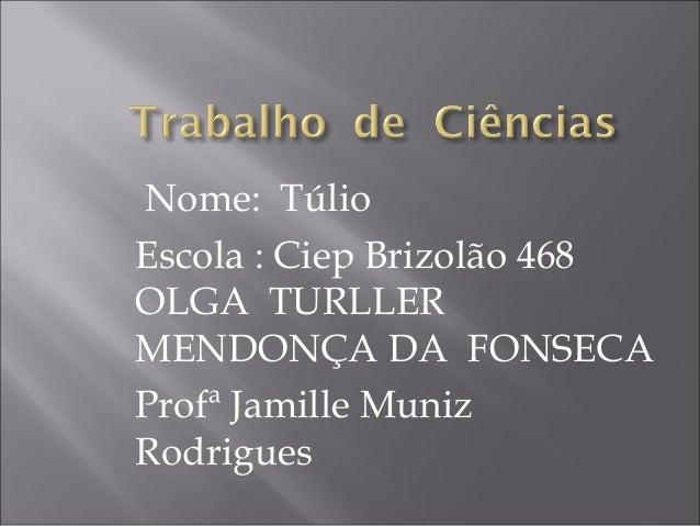 Nome: Túlio Escola : Ciep Brizolão 468 OLGA TURLLER MENDONÇA DA FONSECA Profª Jamille Muniz Rodrigues