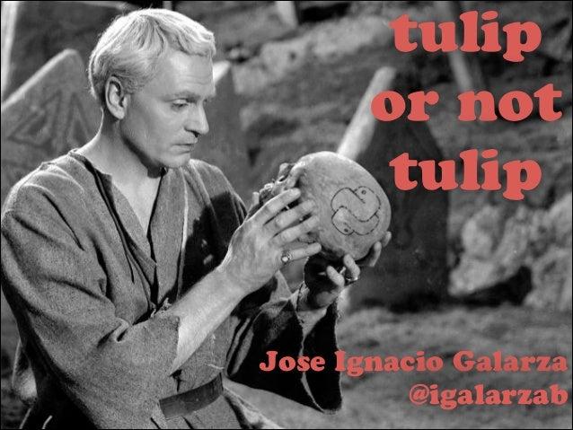 tulip or not tulip  Jose Ignacio Galarza @igalarzab