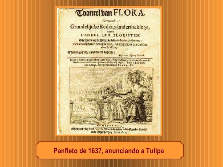 Panfleto de 1637, anunciando a Tulipa