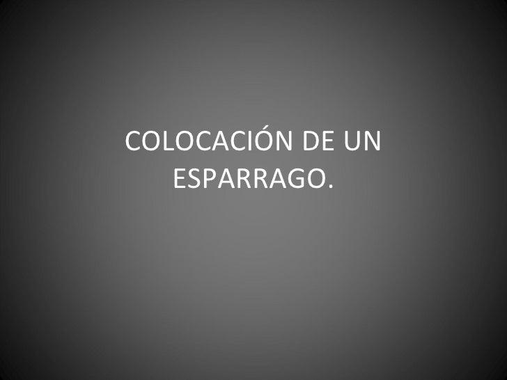 COLOCACIÓN DE UN ESPARRAGO.