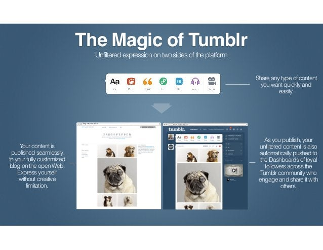 Publishers can publish their content simultaneously to the open Web and to the                dashboards of Tumblr followe...