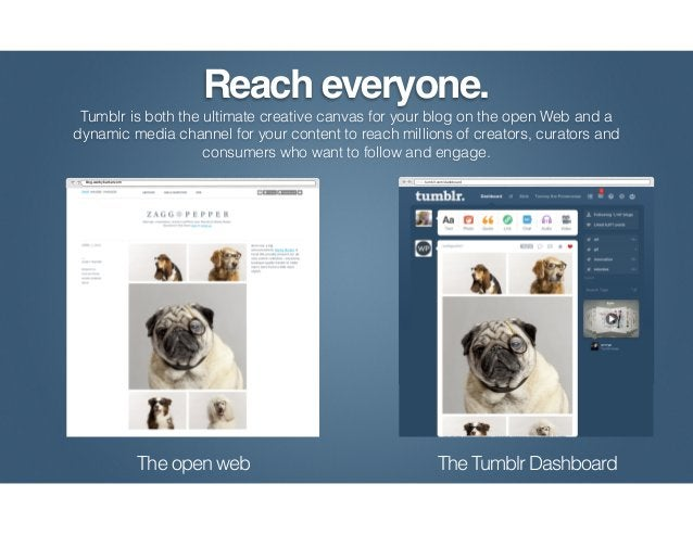 Users can consume unfiltered content from their favorite Tumblr blogs on their                  dashboards as its being pu...