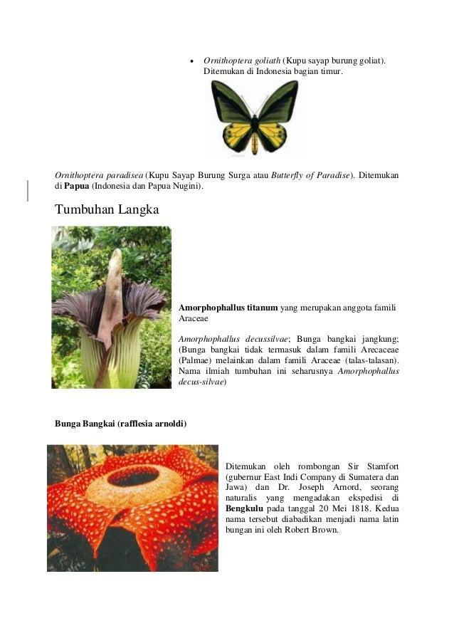 Tumbuhan dan hewan langka