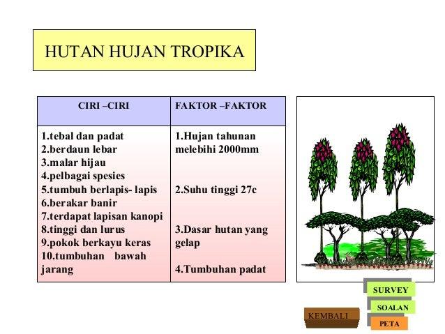 Tumbuhan semulajadi tg.1