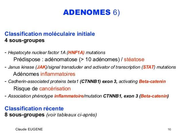 Définition Du Terme Adénomatose - Logbookloanstoday