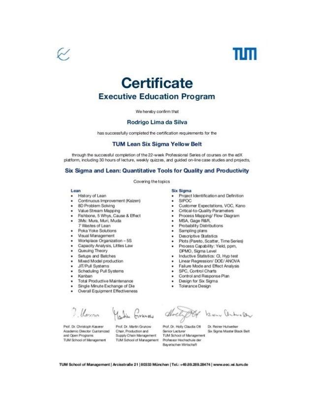 Certified Lean Six Sigma Yellow Belt Clssyb