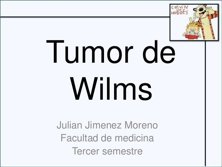 Tumor de Wilms<br />Julian Jimenez Moreno<br />Facultad de medicina<br />Tercersemestre<br />