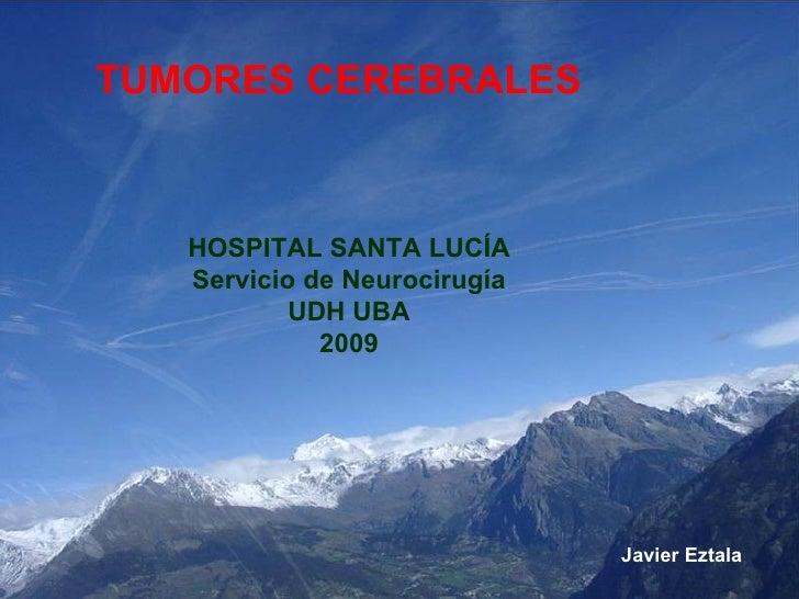 <ul><li>TUMORES CEREBRALES  </li></ul>HOSPITAL SANTA LUCÍA Servicio de Neurocirugía UDH UBA 2009 Javier Eztala
