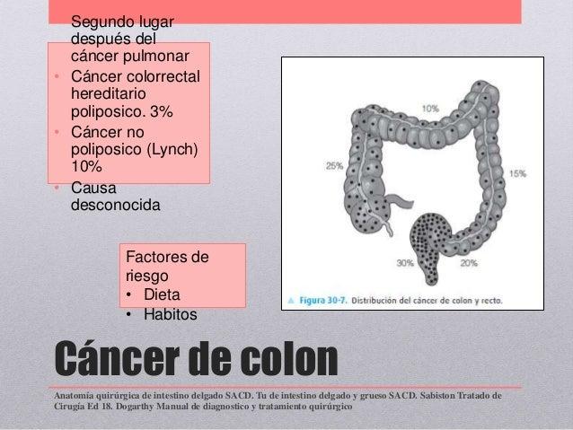 Tumores de intestino delgado y grueso