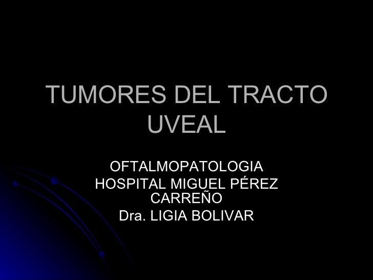 TUMORES DEL TRACTO UVEAL OFTALMOPATOLOGIA HOSPITAL MIGUEL PÉREZ CARREÑO Dra. LIGIA BOLIVAR