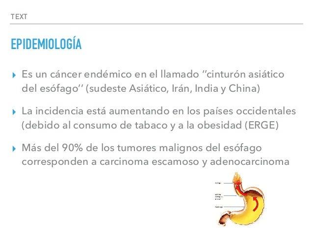 TEXT EPIDEMIOLOGÍA ▸ Es un cáncer endémico en el llamado ''cinturón asiático del esófago'' (sudeste Asiático, Irán, India ...