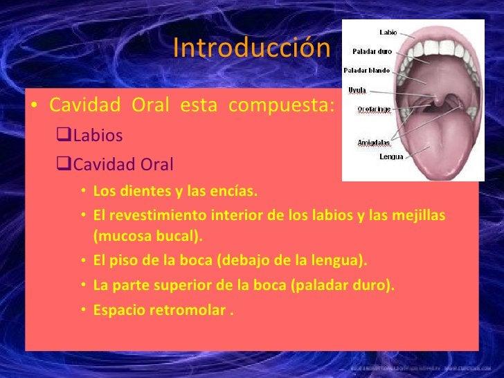 Introducción <ul><li>Cavidad  Oral  esta  compuesta: </li></ul><ul><ul><li>Labios </li></ul></ul><ul><ul><li>Cavidad Oral ...