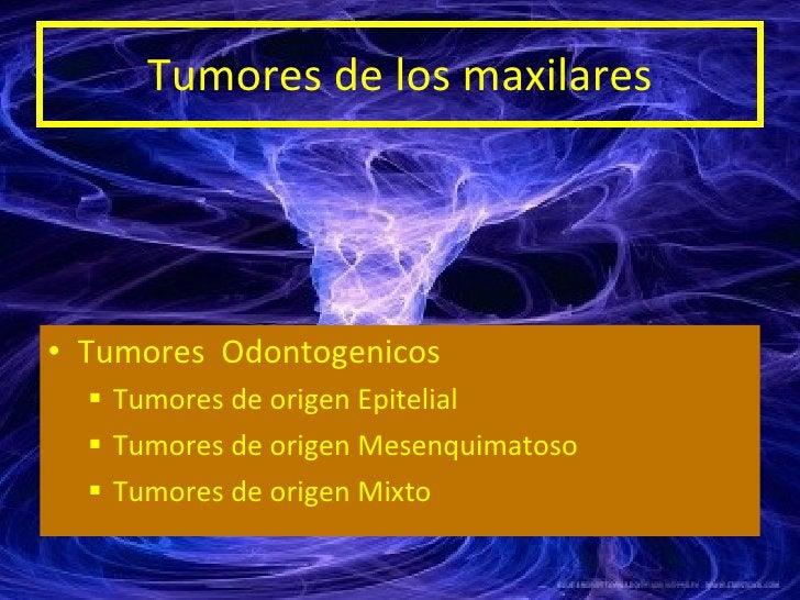Tumores de los maxilares <ul><li>Tumores  Odontogenicos </li></ul><ul><ul><li>Tumores de origen Epitelial </li></ul></ul><...