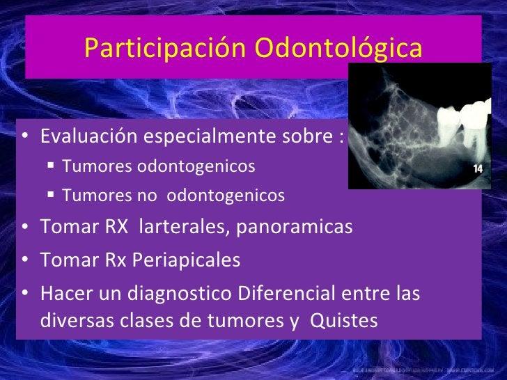 Participación Odontológica <ul><li>Evaluación especialmente sobre : </li></ul><ul><ul><li>Tumores odontogenicos  </li></ul...