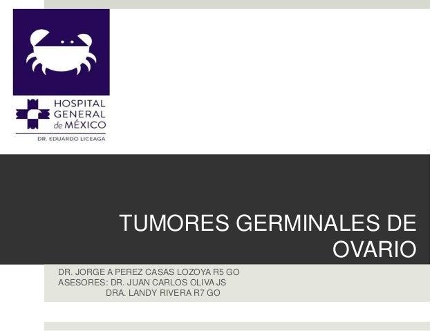 TUMORES GERMINALES DE OVARIO DR. JORGE A PEREZ CASAS LOZOYA R5 GO ASESORES: DR. JUAN CARLOS OLIVA JS DRA. LANDY RIVERA R7 ...