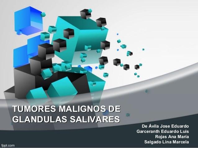TUMORES MALIGNOS DETUMORES MALIGNOS DEGLANDULAS SALIVARESGLANDULAS SALIVARESDe Ávila Jose EduardoGarceranth Eduardo LuisRo...