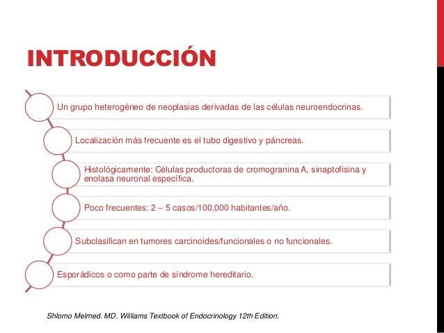 Tumores neuroendocrinos Slide 3