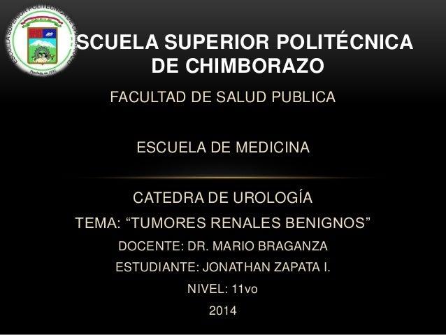"""FACULTAD DE SALUD PUBLICA ESCUELA DE MEDICINA CATEDRA DE UROLOGÍA TEMA: """"TUMORES RENALES BENIGNOS"""" DOCENTE: DR. MARIO BRAG..."""