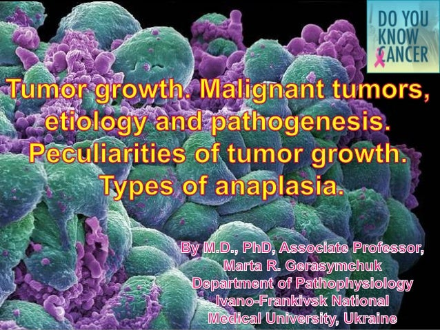 Plan of the lecture  1. Neoplastic growth. Definition.  2. Features of benign and malignant tumors.  3. Classification of ...
