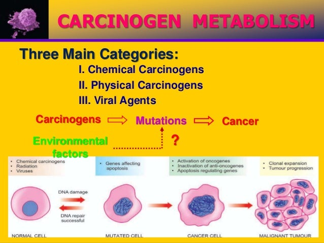 what are some carcinogens that cause cancer