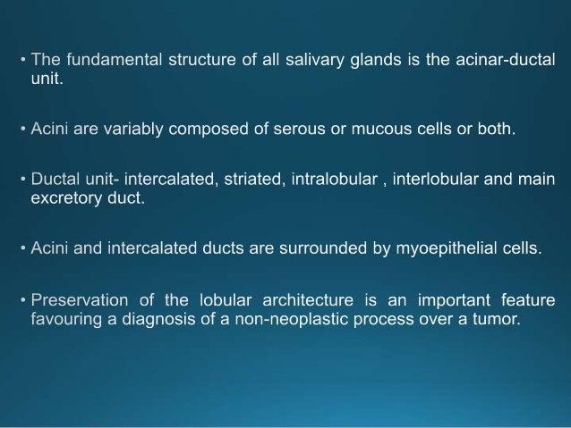 Serous-type acini of a parotid gland with dense secretory granules Histologic section of a submaxillary gland.