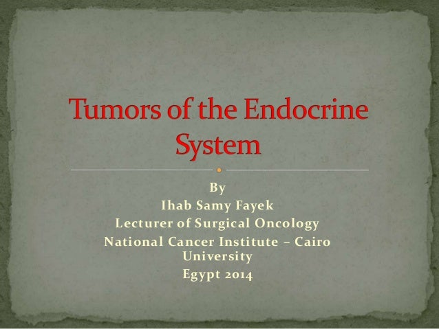By  Ihab Samy Fayek  Lecturer of Surgical Oncology  National Cancer Institute – Cairo  University  Egypt 2014