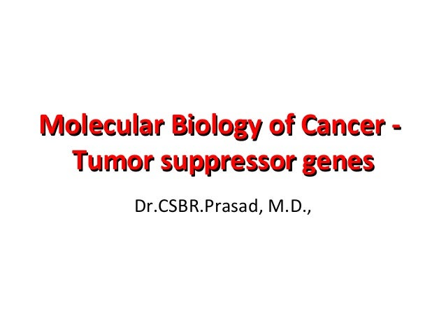Molecular Biology of Cancer -Molecular Biology of Cancer - Tumor suppressor genesTumor suppressor genes Dr.CSBR.Prasad, M....