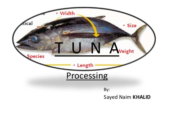 T  U  N  AProcessing<br />By: <br />Sayed Naim KHALID<br />