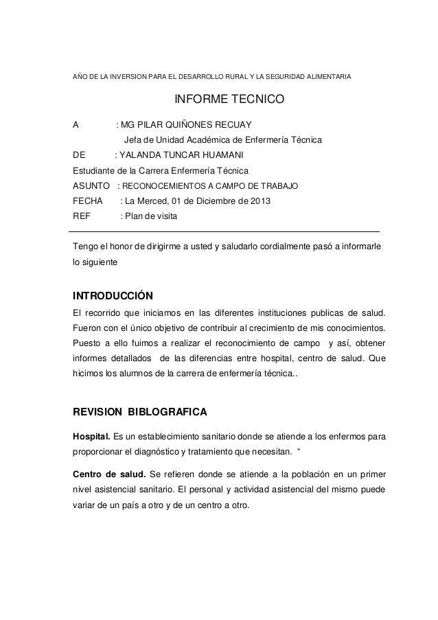 AÑO DE LA INVERSION PARA EL DESARROLLO RURAL Y LA SEGURIDAD ALIMENTARIA  INFORME TECNICO A  : MG PILAR QUIÑONES RECUAY Jef...