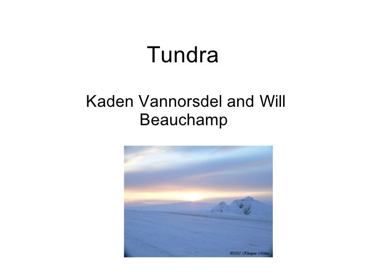 Tundra  Kaden Vannorsdel and Will Beauchamp