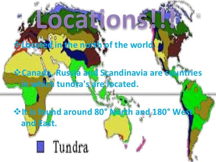 Tundra by Kyle