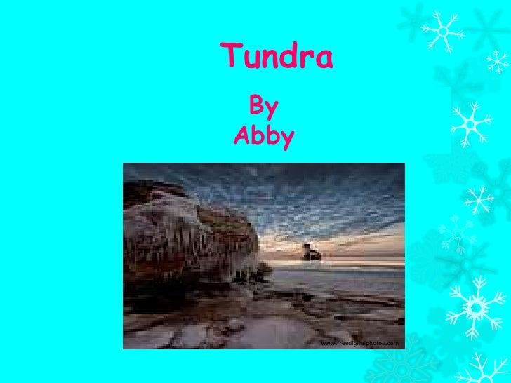 Tundra ByAbby       www.freedigitalphotos.com