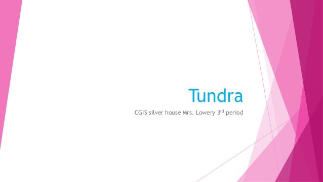 Tundra CGIS silver house Mrs. Lowery 3rd period