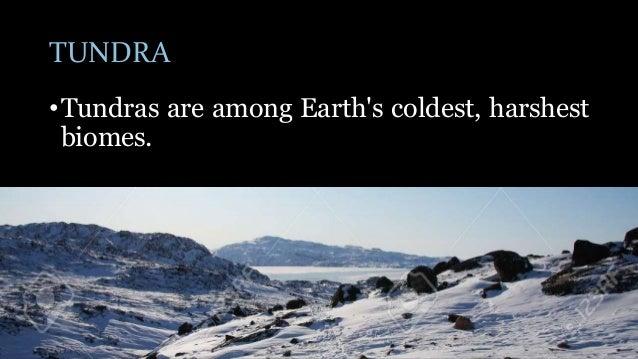 coldest biome