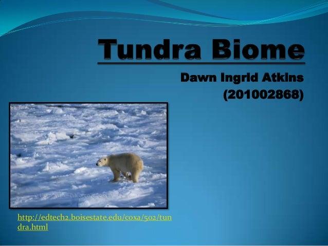 Dawn Ingrid Atkins(201002868)http://edtech2.boisestate.edu/coxa/502/tundra.html