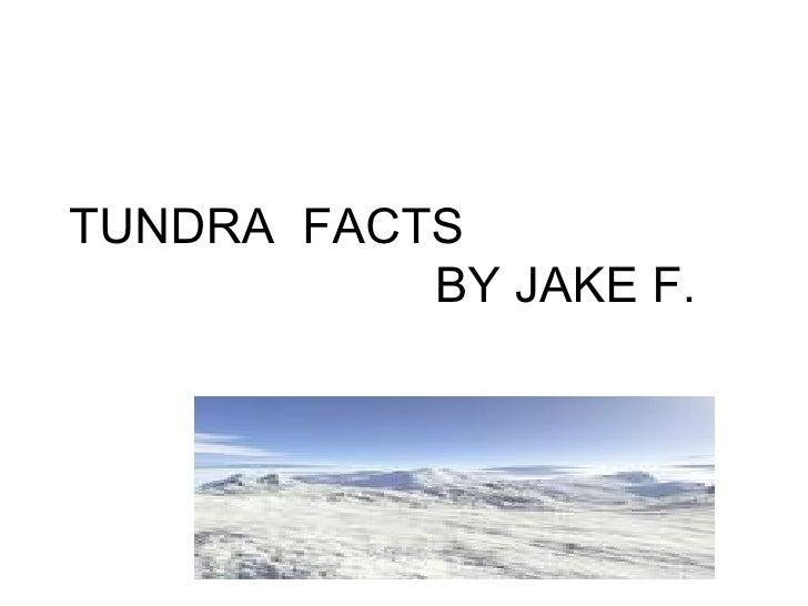 TUNDRA  FACTS  BY JAKE F.