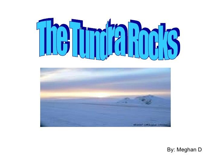 By: Meghan D The Tundra Rocks