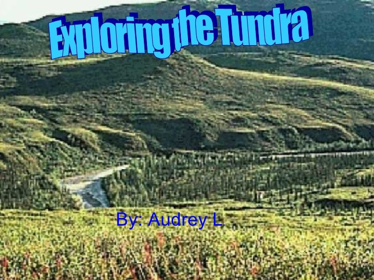 By: Audrey L . Exploring the Tundra