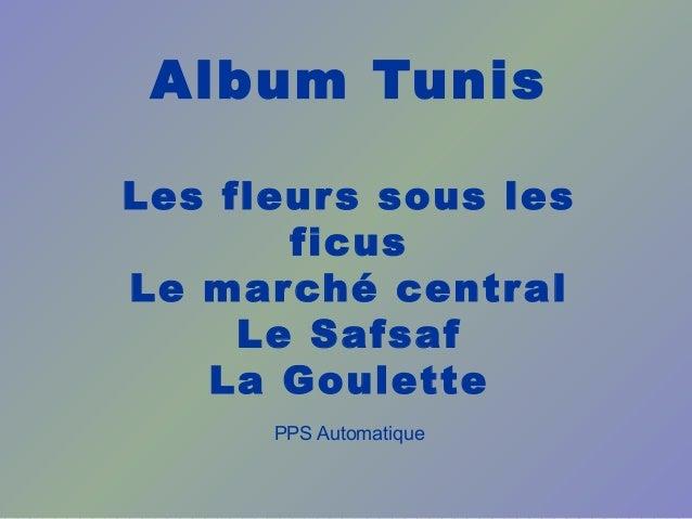 Album Tunis Les fleurs sous les ficus Le marché central Le Safsaf La Goulette PPS Automatique