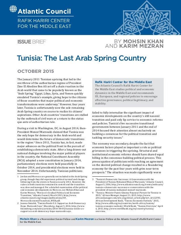 tunisia arab spring pdf