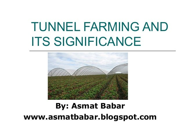 TUNNEL FARMING AND ITS SIGNIFICANCE  By: Asmat Babar www.asmatbabar.blogspot.com
