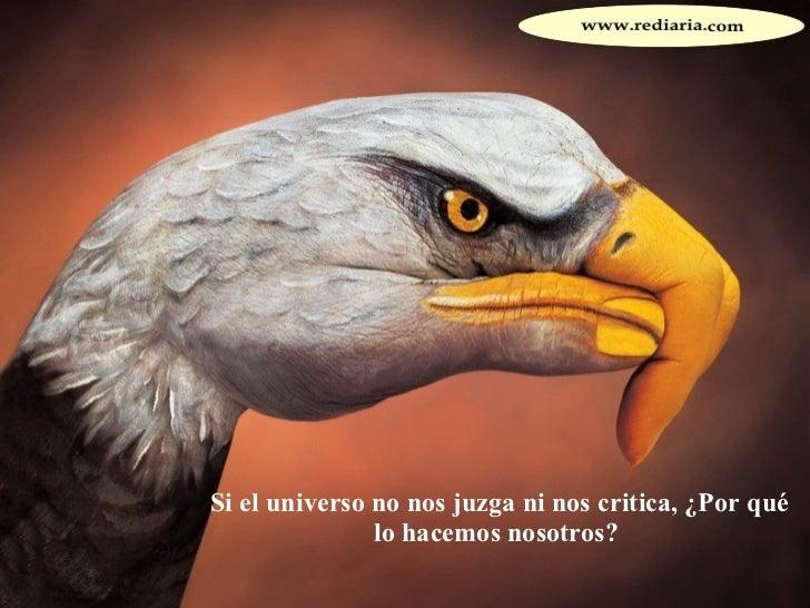 Si el universo no nos juzga ni nos critica, ¿Por qué lo hacemos nosotros?
