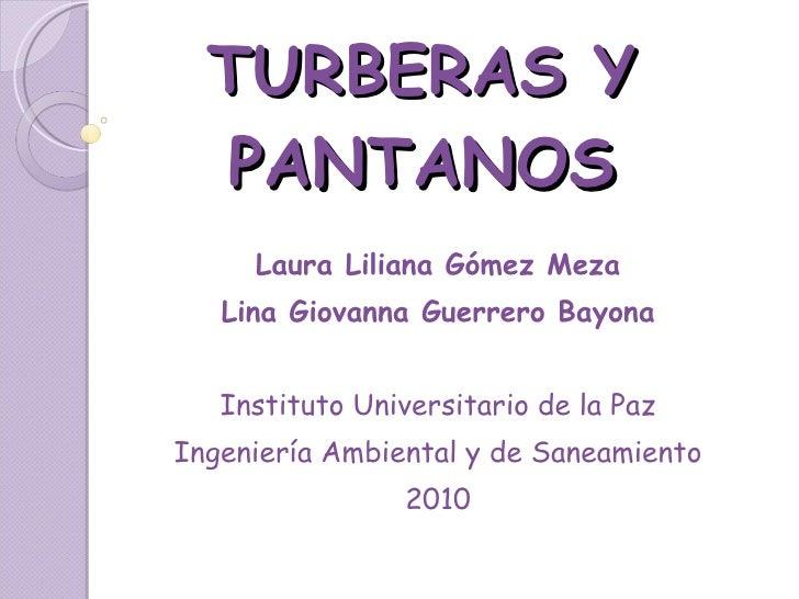 TURBERAS Y PANTANOS Laura Liliana Gómez Meza Lina Giovanna Guerrero Bayona Instituto Universitario de la Paz Ingeniería Am...