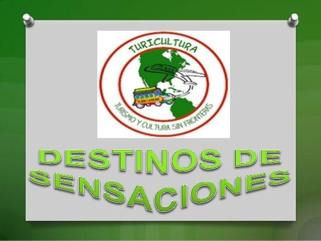 MUNICIPIO DE LA PINTADA CAMPING