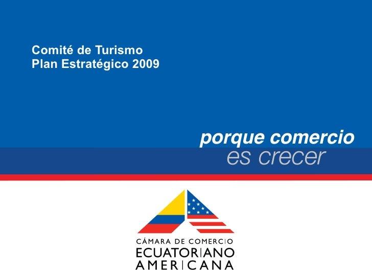 Comité de Turismo Plan Estratégico 2009