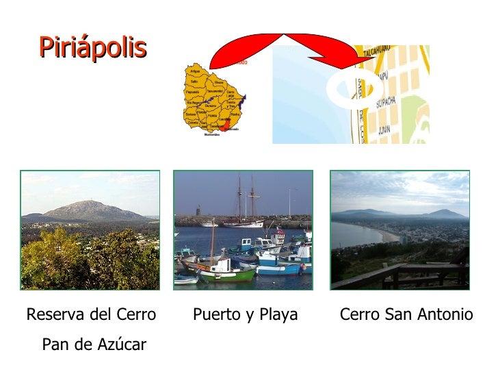 Piriápolis Reserva del Cerro  Puerto y Playa  Cerro San Antonio Pan de Azúcar