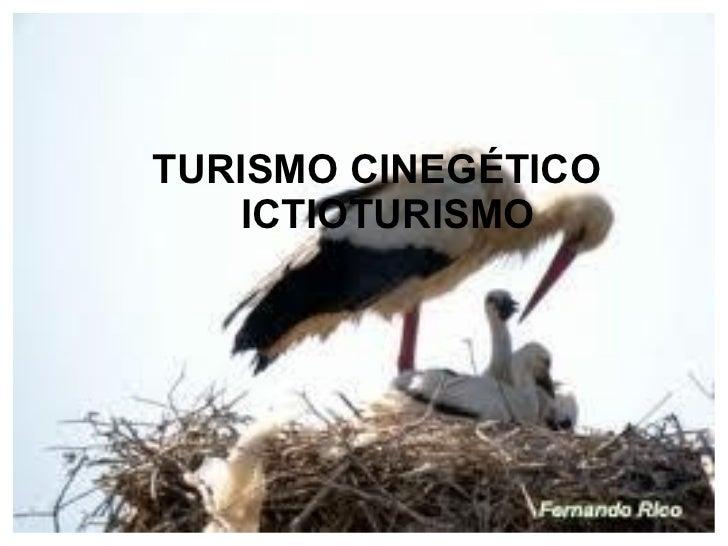 TURISMO CINEGÉTICO    ICTIOTURISMO