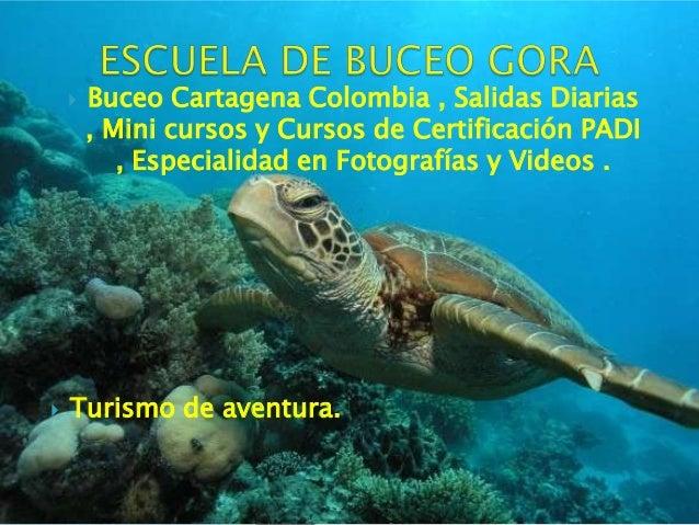    Buceo Cartagena Colombia , Salidas Diarias        , Mini cursos y Cursos de Certificación PADI           , Especialida...