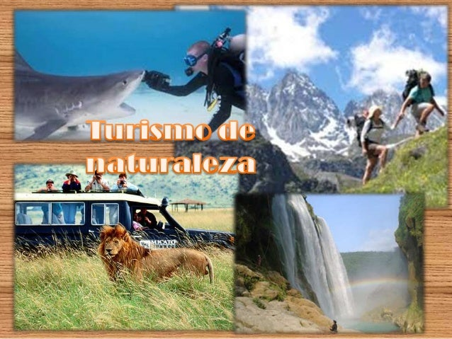 ¿Qué es el ecoturismo? Viajes para realizar actividades recreativas en contacto directo con la naturaleza.